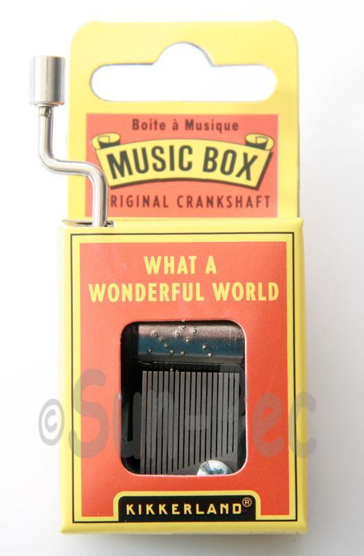 What a Wonderful World Kikkerland Wind-Up Hand Crank Music Box 1pcs